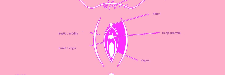 tabu blog, vagina